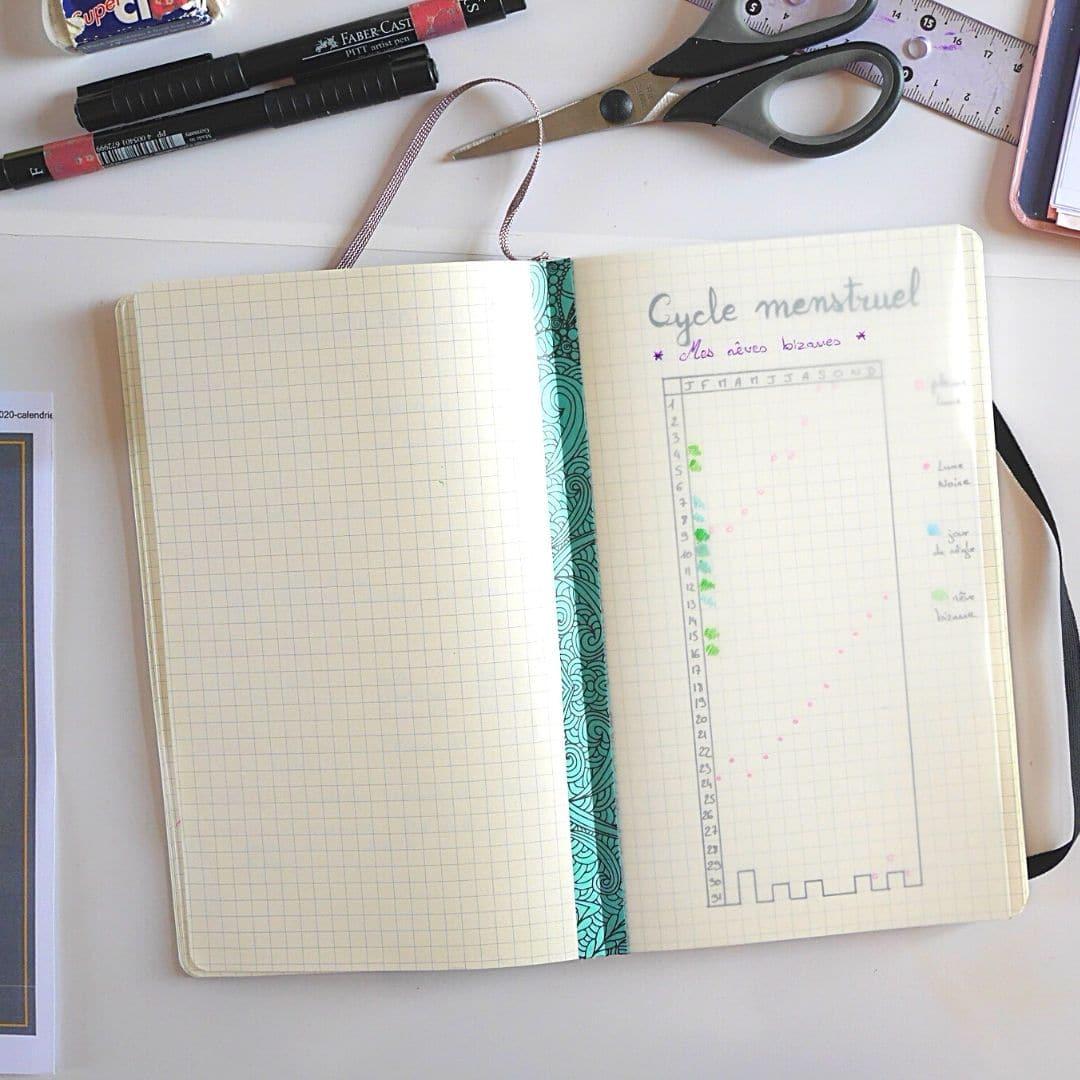 Collection ou tracking list de bullet journal avec un page de calque pour comparer le suivi